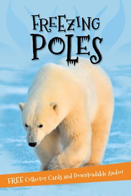 Book cover for It's all about... Freezing Poles